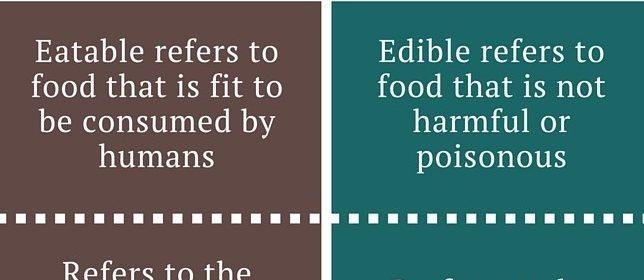 Eatable 和 Edible 有什么联系与区别,如何正确使用。