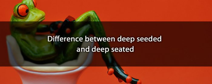 Deep-Seated 和 Deep-Seeded的用法解釋