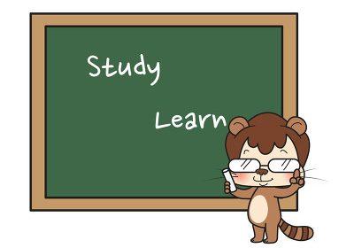 Study 还是 Learn?细究Study与Learn的区别